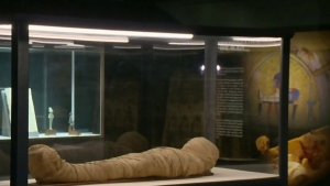Exhibition features artifacts from ancient Egypt