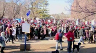 Historic one-day teachers strike