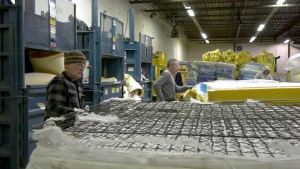 Staff at 'Re-Matt' take apart mattresses at their facility in southeast Calgary. Since they company began over five years ago it diverted 150 thousand mattresses bound for the landfill