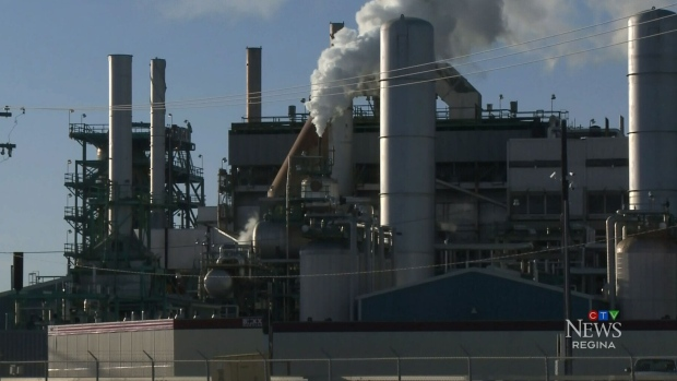 Professor raising concerns around safety at Co-op Refinery amid labour dispute