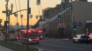 Nearly 40,000 bees shut down a California block and sent five people to the hospital. (Pasadena Fire Department)