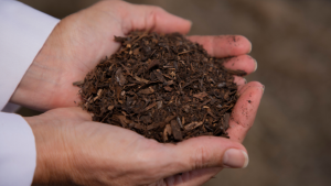 In a new study, researchers successfully composted six donor bodies. (Courtesy of Lynne Carpenter-Boggs/AAAS)