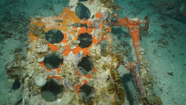 Punched holes in a panel from an SBD-5 Dauntless dive bomber are visible in wreckage resting on the floor of Truk Lagoon near the main debris site. (University of Delaware, courtesy of Dr. Mark Moline)