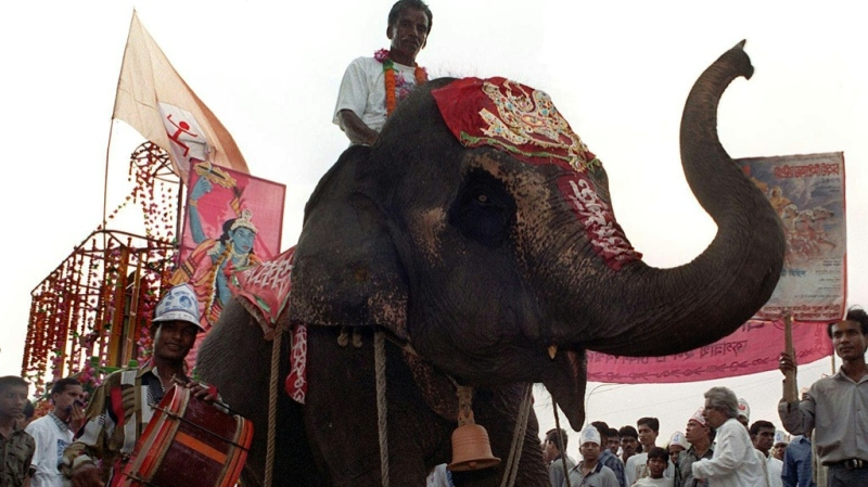 A mahout guides a decorated elephant in Dhaka. (AFP)