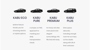 A screen grab from Kabu's website is shown.