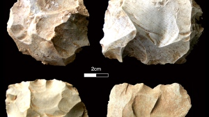 Stone tools found at the Dhaba site corresponding with the Toba volcanic super-eruption levels. Pictured here are diagnostic Middle Palaeolithic core types. (Chris Clarkson via CNN)