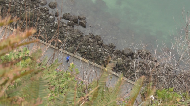 Police say it appears a 26-year-old man from Alberta climbed over a fence at Prospect Point and fell onto the Stanley Park seawall on Feb. 23, 2020.
