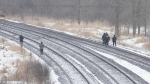 Protesters and Ontario Provincial Police officers walk on either side of the tracks in Tyendinaga Mohawk Territory, near Belleville, Ont., on Wednesday, Feb. 26, 2020. THE CANADIAN PRESS/Lars Hagberg