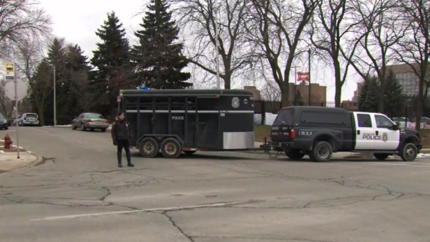 This image provided by WISN-TV, police respond to a possible shooting at the MillerCoors campus in Milwaukee on Wednesday, Feb. 26, 2020. (WISN-TV via AP)