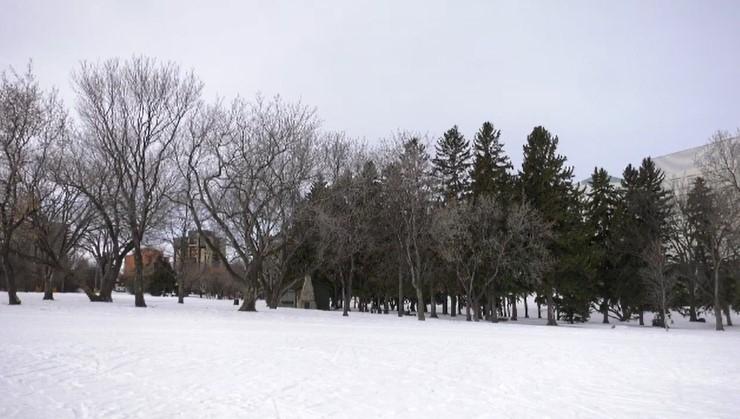 Saskatoon forecast February 27