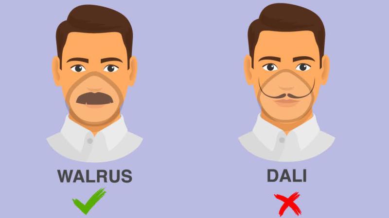 CDC beards