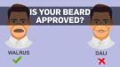 Beard CDC