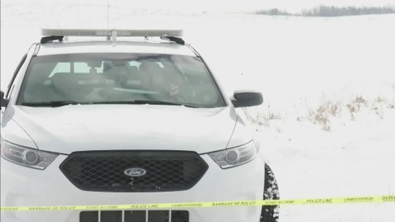 Arrest made in Airdrie murder