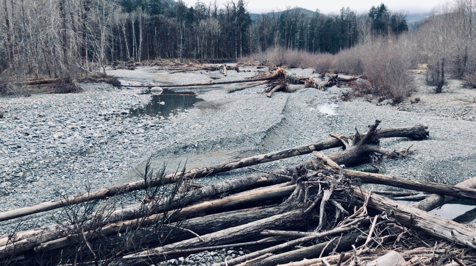 The same U-shaped section of the Cowichan River is pictured after the river changed course in January: Feb. 27, 2020 (CTV News)