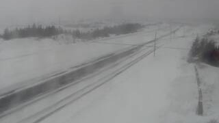 A stretch of the Trans-Canada Highway near Holyrood, N.L. is seen in this traffic camera image on Friday, Feb. 28, 2020. (Government of Newfoundland and Labrador)