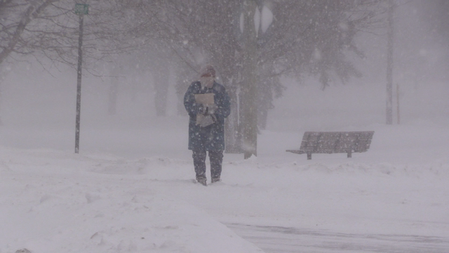 Strong wind and heavy snow make getting around a challenge in Wingham, Ont. on Friday, Feb. 28, 2020. (Scott Miller / CTV London)