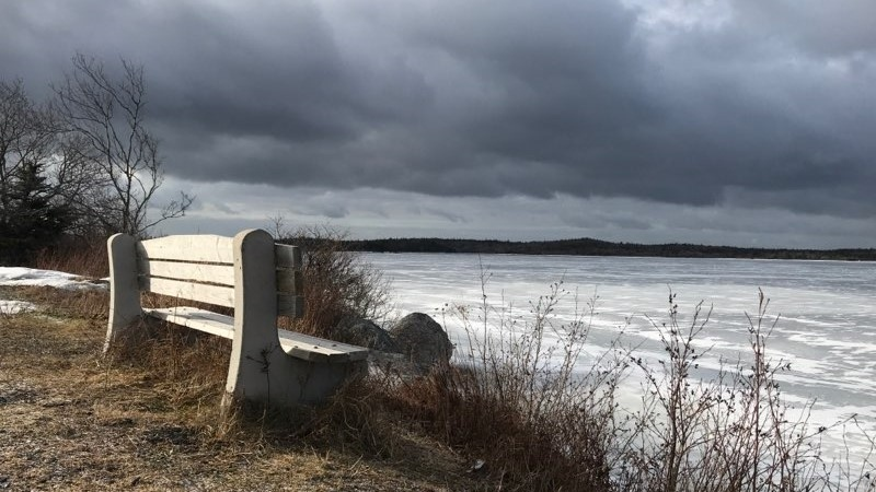 This bench is situated along the shore of Grand Lake, N.S.