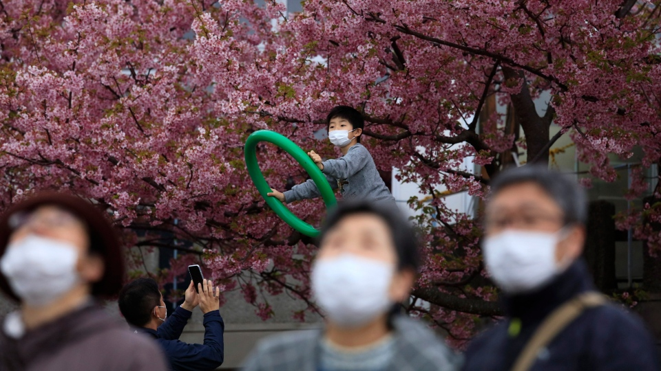 People with masks visit a cherry blossom festival in Matsuda, Kanagawa prefecture, south of Tokyo, Saturday, Feb. 29, 2020. (AP Photo/Jae C. Hong)