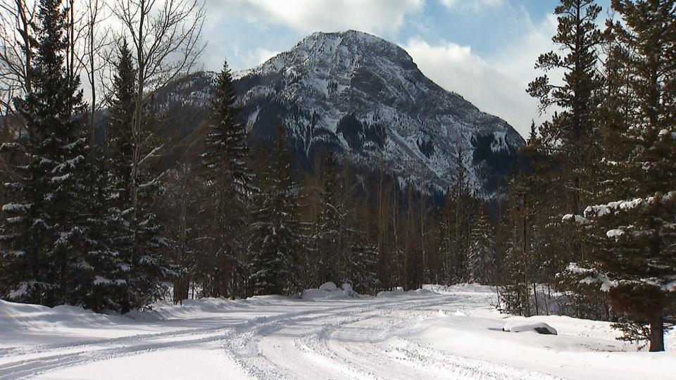 CTV National News: Alberta parks in peril