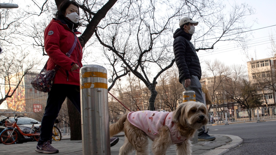 A resident wearing a mask walks her dog on the streets of Beijing on Thursday, March 5, 2020. (AP Photo/Ng Han Guan)