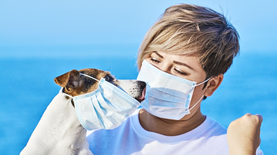 A B.C. vet says putting a mask on your pet isn't helpful to stopping the spread of COVID-19. (Shutterstock)