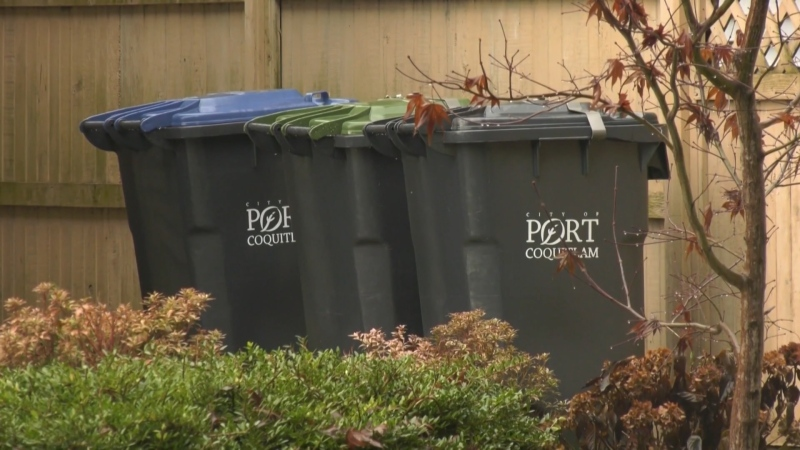 A proposed bylaw would penalize homeowners who fail to secure their garbage or green waste bins properly, increasing the current fine of $150 to $500.