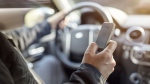 Distracted driving. (Shutterstock)