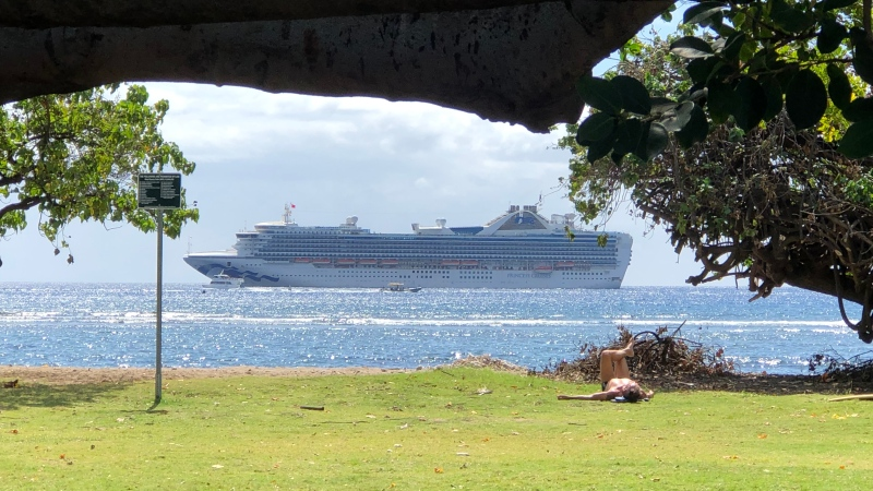 The Princess Cruises ship on which Julia and Urbain Vanier of Windsor, Ont. were travelling is seen in this family photo.