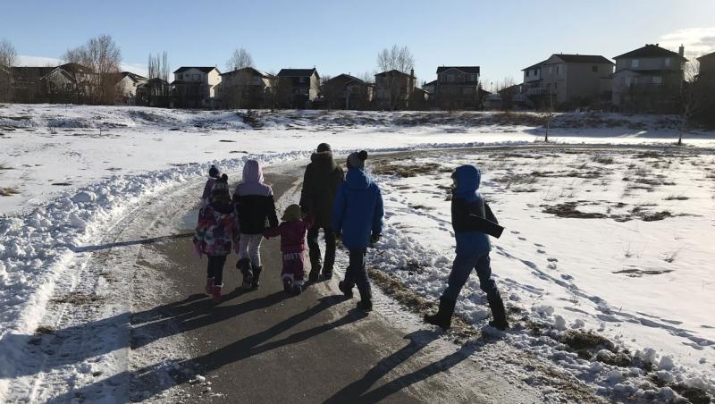 Calgary News | Local Breaking | CTV News Calgary