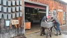 Sweet embrace for maple syrup producer