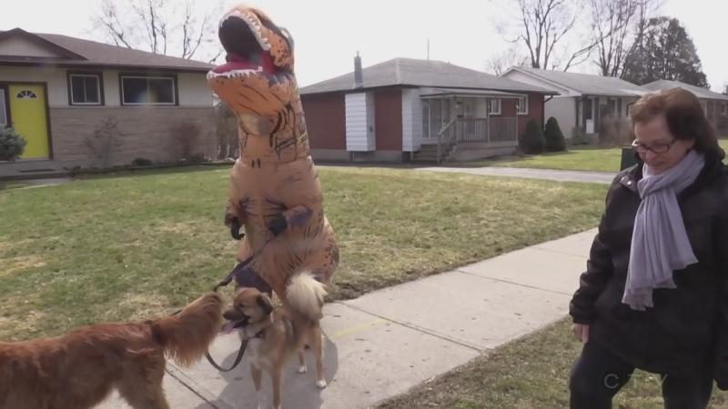 Denise 'Dinosaur' Testa
