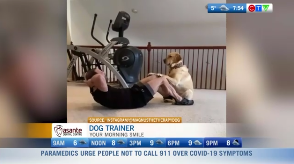 Dog trainer, quarantine fitness