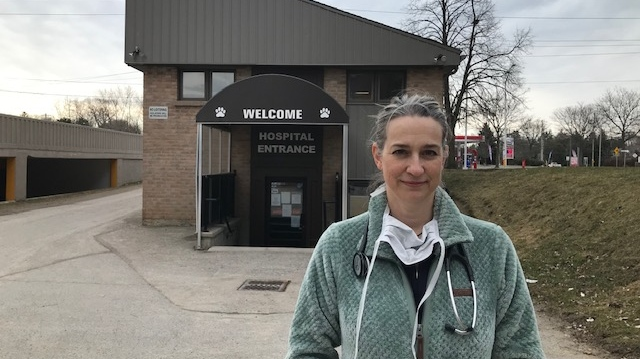 Dr. Kristina Russell of Stoneybook Animal Hospital speaks in London, Ont. on Thursday, March 26, 2020. (Sean Irvine / CTV London)