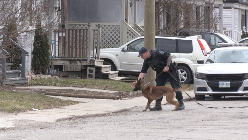 St. Thomas Police investigate with K-9