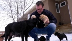 Mike Moore, Calgary Hitmen VP, with his litter of puppies