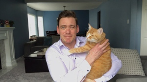 CTV News Vancouver Island anchor Andrew Johnson is in self-isolation at home during the coronavirus pandemic, with his cat Cheddar. (CTV News)