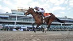 Tiz the Law, ridden by Manuel Franco, wins the Florida Derby horse race at Gulfstream Park, on March 28, 2020. (Lauren King / Coglianese Photos, Gulfstream Park via AP)