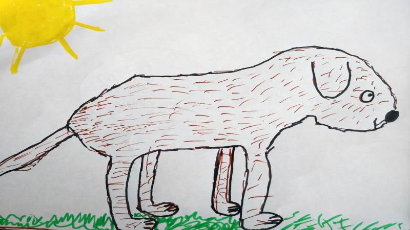 Adamo, 10 years old, St. Bernard Catholic School, Ottawa