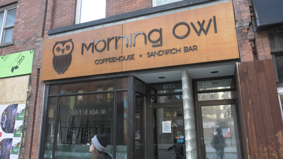 Morning Owl, on Bank Street