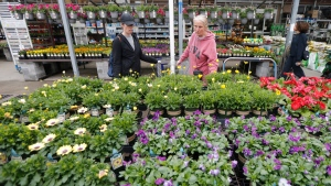 FILE - In this March 23, 2020, file photo, Gail Henrickson, right, and her daughter, Melissa, shop for plants at a local garden center as they stay at home during the coronavirus outbreak in Richmond, Va. (AP Photo/Steve Helber, File)