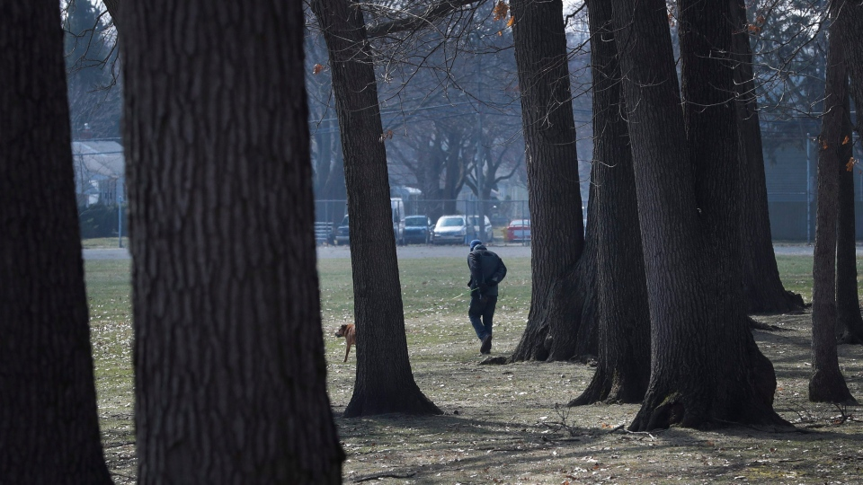 A dog is walked, Wednesday, March 25, 2020, in Oak Park, Mich. Health care and government officials have been urging people to get outside and shake off the COVID-19and coronavirus blues for both our mental and physical health. (AP Photo/Carlos Osorio)