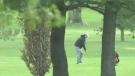 Golfer at Fanshawe Golf Course despite it being closed. (CTV London)