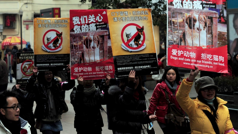 Chinese animal rights activists stage a protest calling for people to refrain from eating cats and dogs. (AFP/Getty Images/CNN)