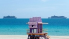 florida cruise ships covid-19