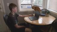 Island teachers adjust to working through Zoom