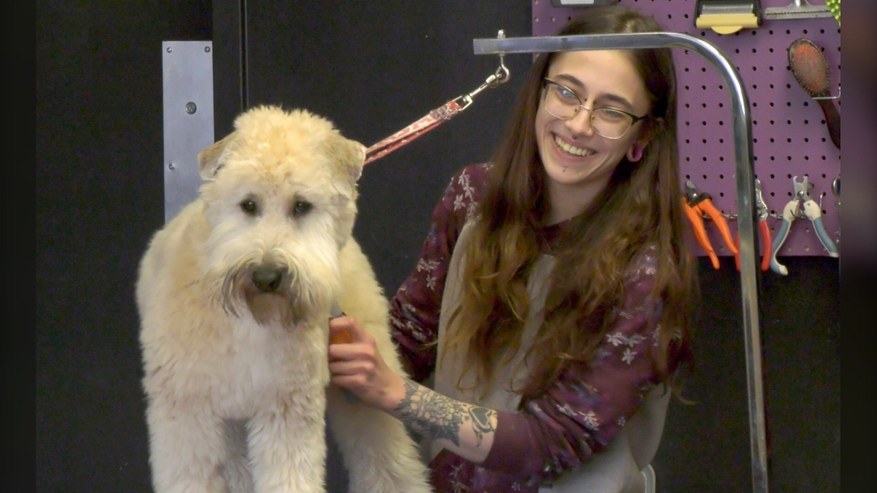 Nadia Ansari says she would have had to shut her dog grooming business down if her landlord didn't give her a break on April's rent.