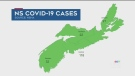 N.S. breaks down confirmed COVID-19 cases by zone