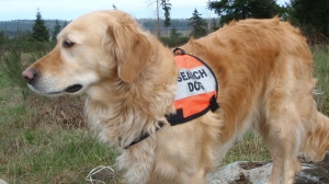 Luke was an active member of the Comox Valley Ground Search and Rescue team for seven years: (Comox Valley Ground Search and Rescue / Facebook)
