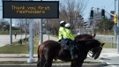 Toronto police officers stop at a red light as they patrol on their service horses in Toronto on Thursday, April 2, 2020. Health officials and the government has asks that people stay inside to help curb the spread of the coronavirus also known as COVID-19. THE CANADIAN PRESS/Nathan Denette