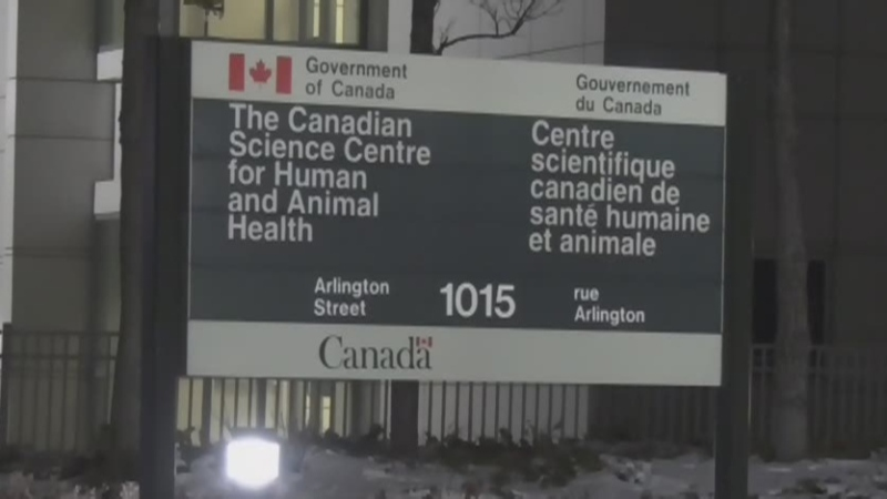 Lab worker exposed to coronavirus from chickens
